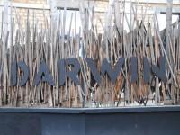 Un après-midi original à Bordeaux : le hangar Darwin