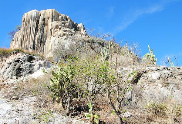La nature mexicaine à Oaxaca