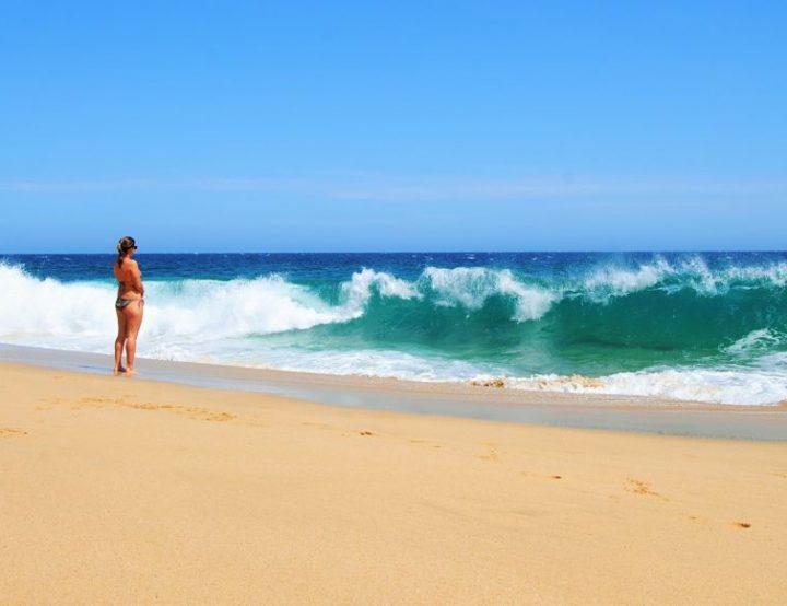 Basse-Californie une langue de désert entre la mer et l'océan