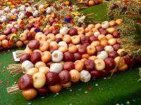 Marché à l'oignon de Berne : Zibelemärit