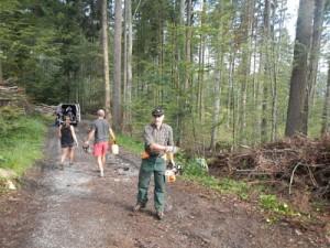 Couper du bois pour le feu de la fête nationale suisse
