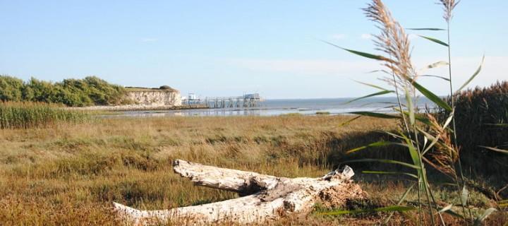 Balade sur les bords de la Gironde – Journées du patrimoine
