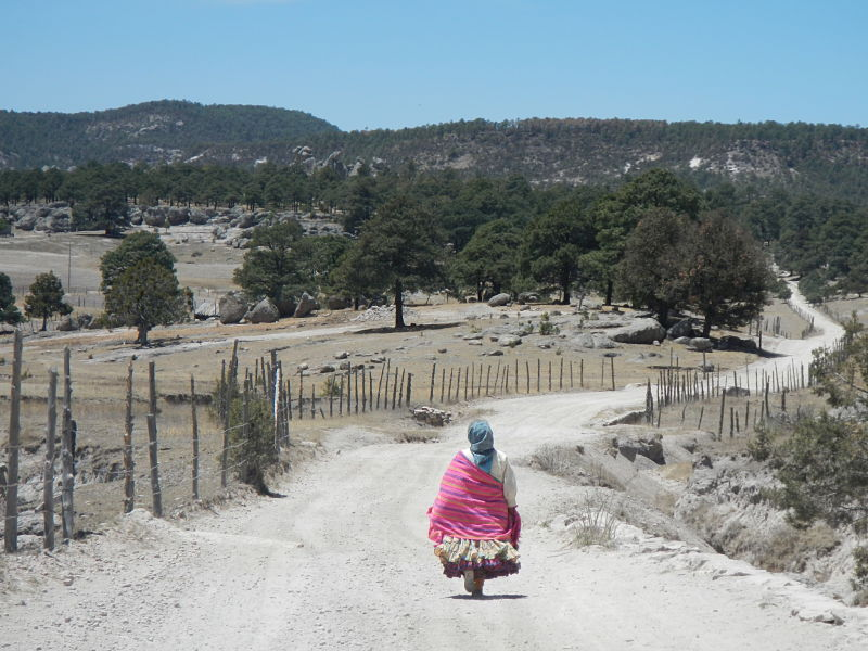 Femme indigène Tarahumara près de Creel