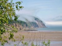 A la découverte de la baie de Fundy et des rochers Hopewell