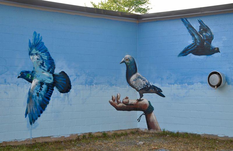 Street art urbain à Moncton par Jon Fox
