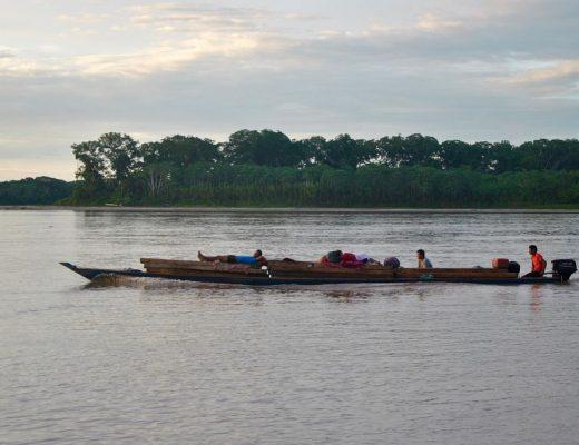 Puerto Maldonado : visiter la forêt amazonienne au Pérou