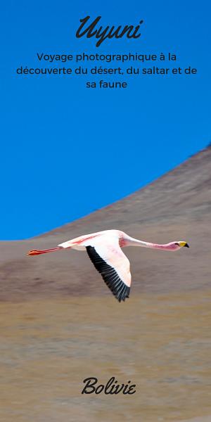 Rencontre le Monde vous fait voyager dans le désert de sel d'Uyuni
