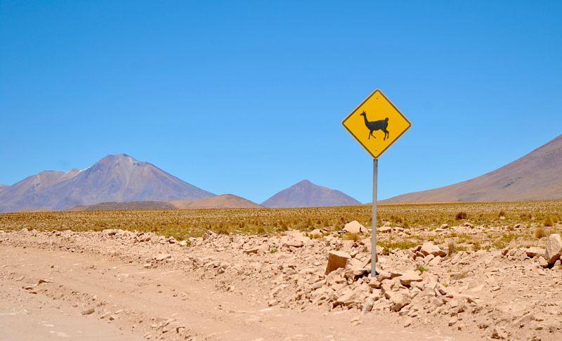 Panneau de prévention pour les lamas en Bolivie