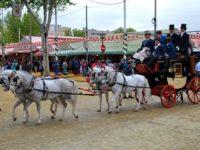 La Feria de Séville au travers de portraits – Photographie