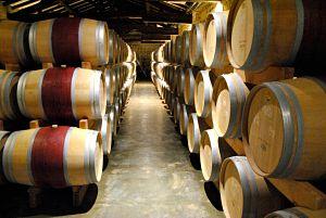 Découverte des vins du Médoc lors de mon voyage à vélo de La Rochelle à Bordeaux