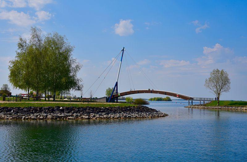 Partir en balade en bateau sur le Lac du Der