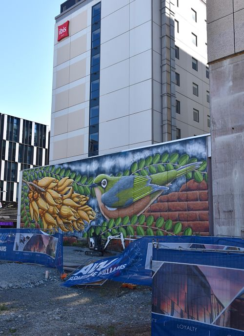 Construction et street art à Christchurch