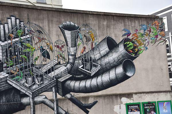 Détail d'une murale de street-art à Dunedin