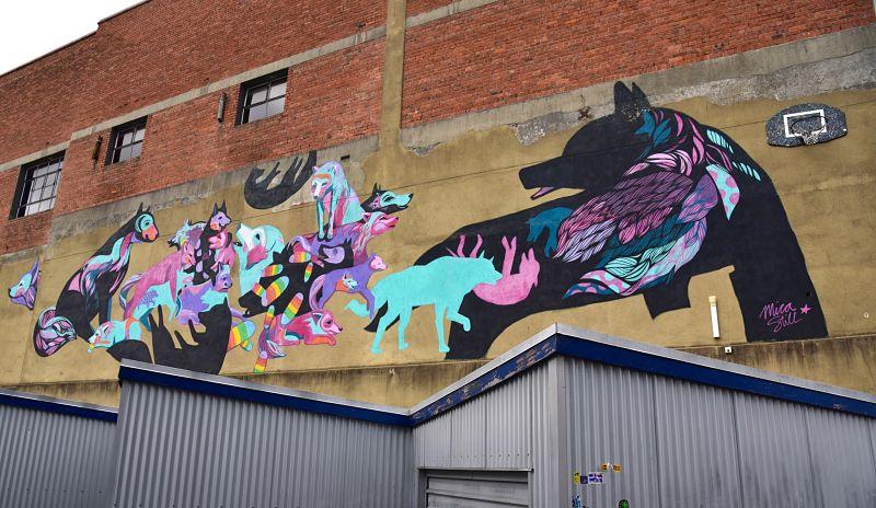 Visiter Dunedin autrement sur le Street Art Trail