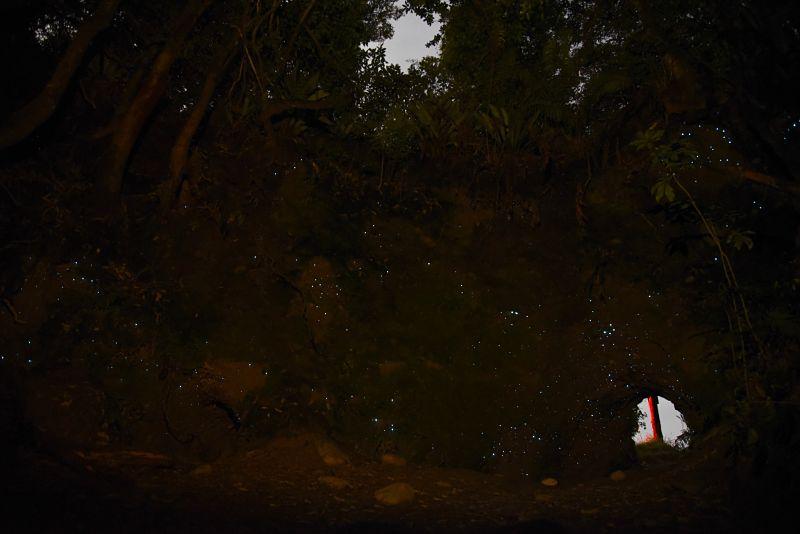 Grotte de vers luisants à Hokitika sur la côte ouest de la Nouvelle-Zélande