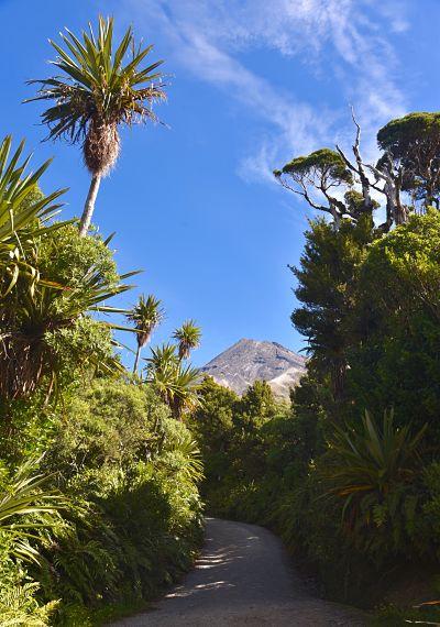 Randonnée au sommet du Mont Taranaki